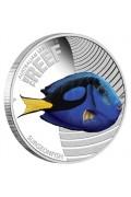 2012 Australian Sea Life II - The Reef - Surgeonfish 1/2oz Silver Proof Coin